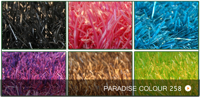 Rasen bunt, Paradise 258